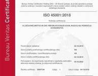 ISO 45001 (2)